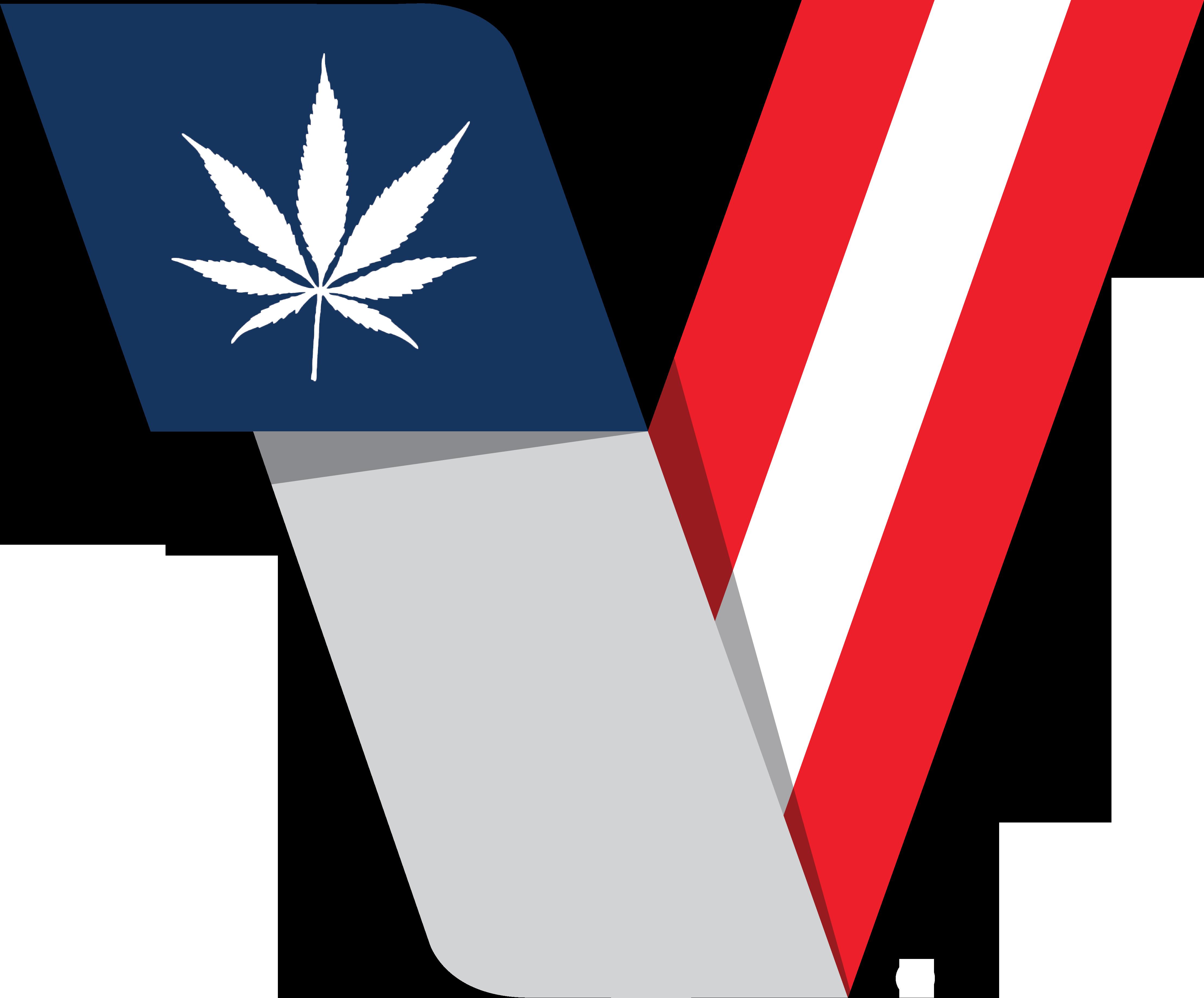 v logo final